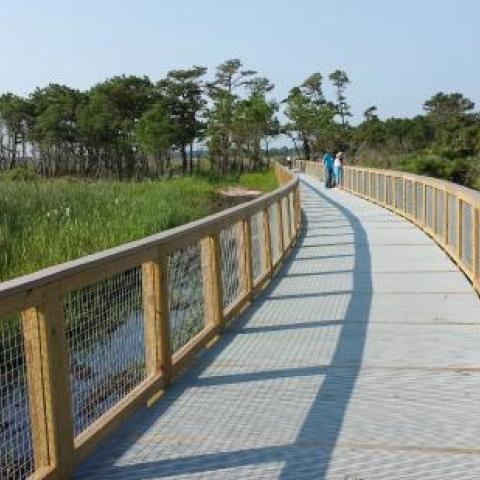 Bike trail in Delaware State Park