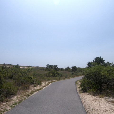 Bike Path Cape Henlopen