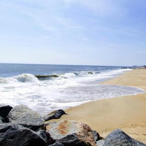 Cape Henlopen State Park Delaware Beach