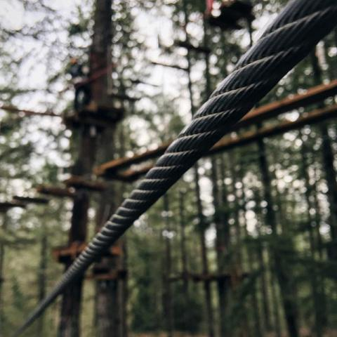 close up of rope at the Tree to Tree Adventure Park